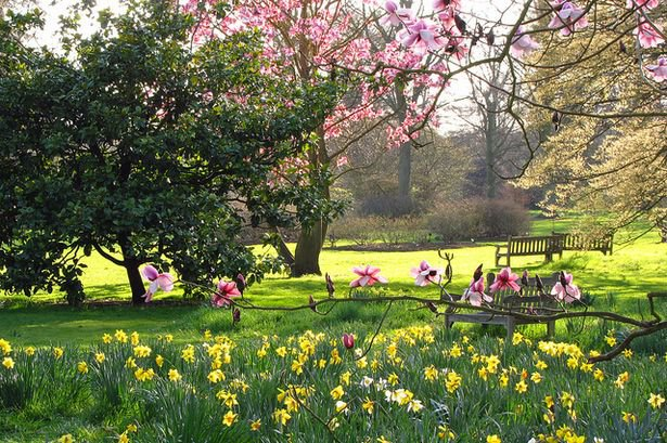 What's On in Norfolk This Spring